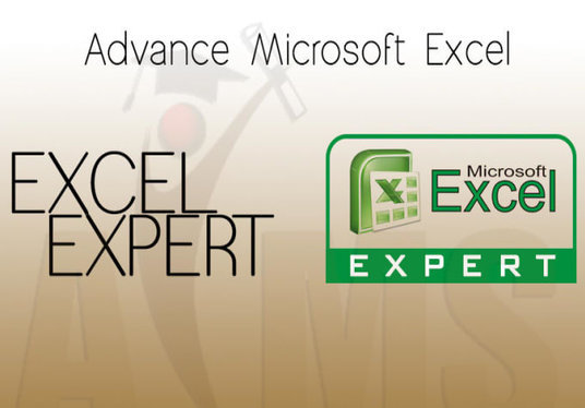 I will make Pivot table and VBA on excel at a reasonable rate