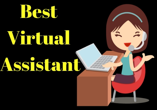 I will be your perfect virtual assistant
