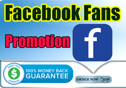 add real & active 100+ Facebook likes or fans your page