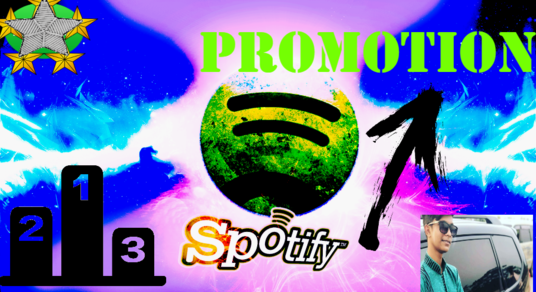 I will Provide 2000 (USA) plays in your Spotify Account