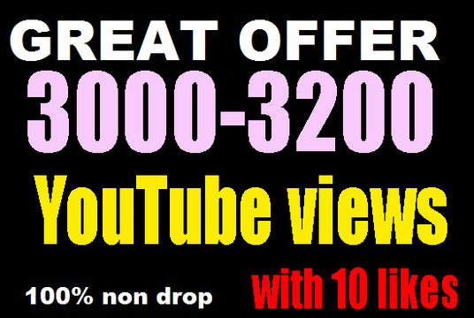 I will do 3000 Permanent YouTube video views