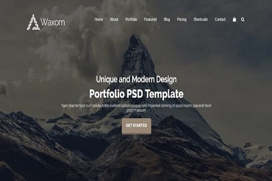 I will install WordPress and Customize theme for a professional Website