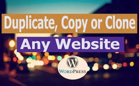 I will migrate, move or transfer any website on Wordpress.