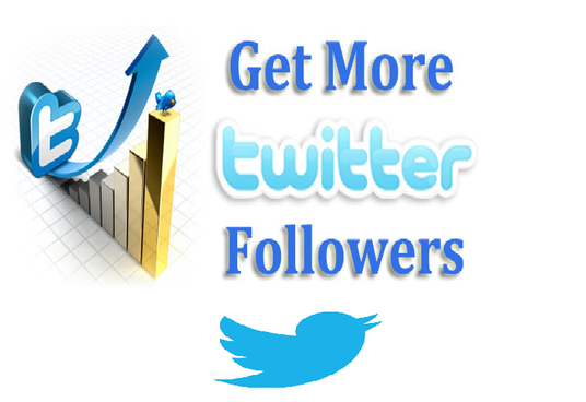 I will add 1300 plus twitter followers