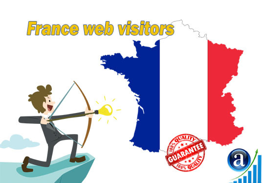I will send 20000 web visitors from France organic web traffic with search keyword