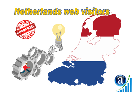 I will send 25000 web visitors from Netherlands organic web traffic with search keyword