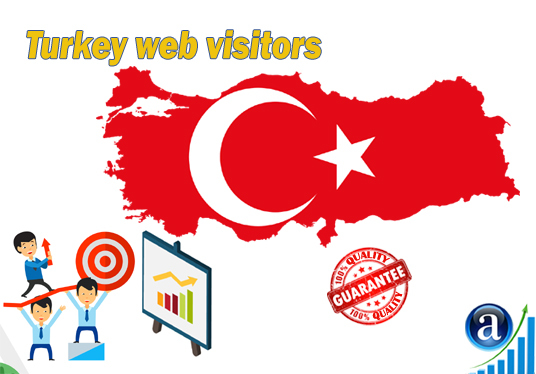 I will send 25000 web visitors from Turkey organic web traffic with search keyword