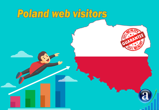 I will send web visitors from Poland organic web traffic with search keyword