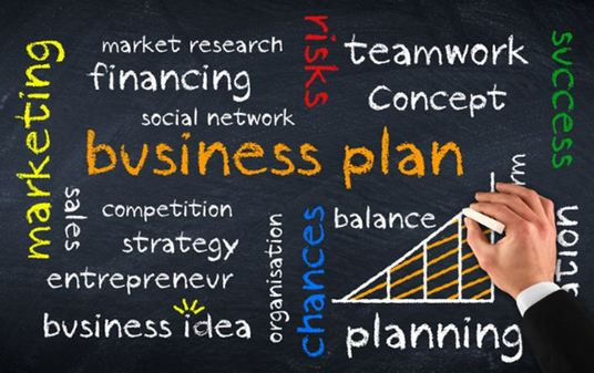I will create a winning business plan for you