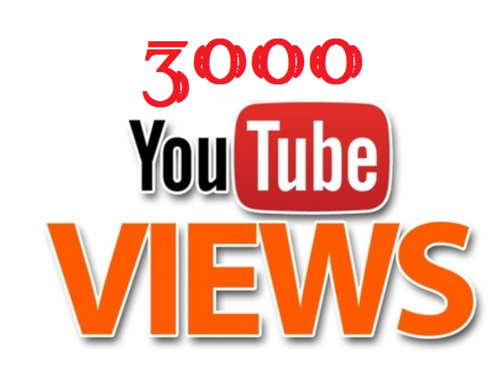 Provide you 1000 Youtube Views