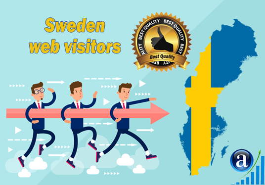 I will send Real web visitors from Sweden High Quality web traffic