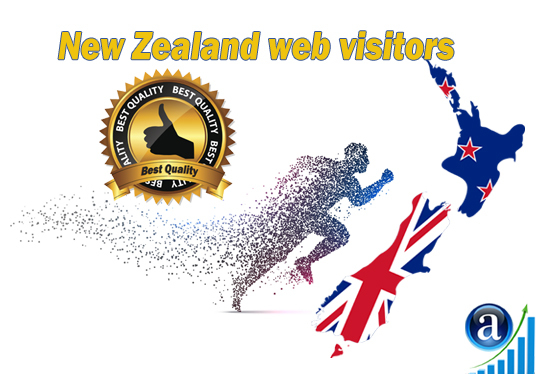 I will send Real web visitors from New Zealand High Quality web traffic