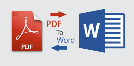 I will Professionally convert pdf to Word and vice versa