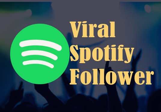 Provide 1000 Spotify Real Followers