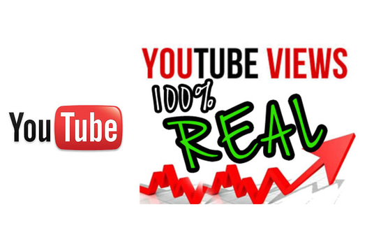 I will give 1300 plus you tube video views with Refill Guarantee