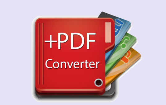 I will convert 30 pages PDF to MS word or image to text