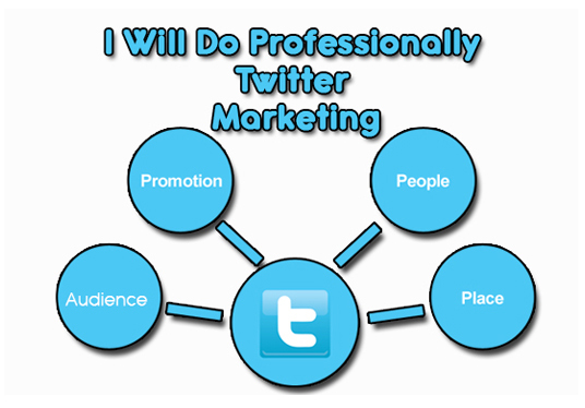 I will Do Professionally Twitter Marketing