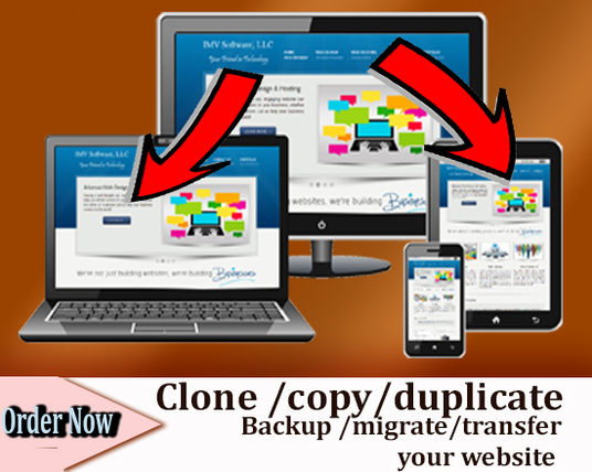 I will Clone, Copy, Duplicate, Backup Or Migrate Any Website