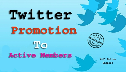 I will add 600+ active members to your twitter