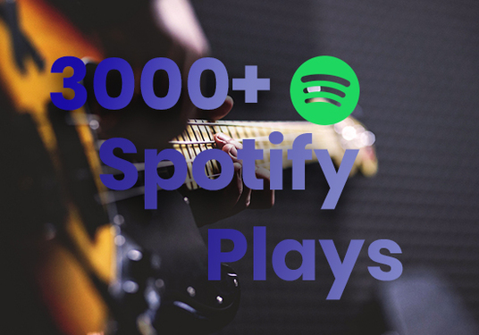 I will Provide 3000+ Spotify Plays