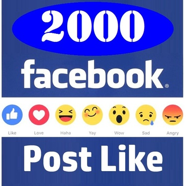 provide 500 facebook post likes