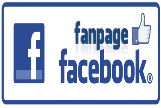 I will Give You 100 Facebook Page like