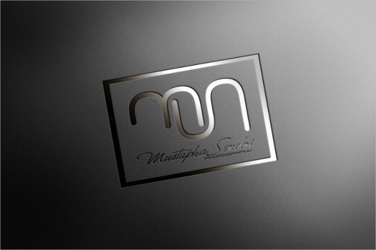 create two premium class logo for your company