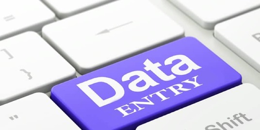 I will do best Data Entry for you