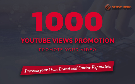I will delivery 1000 YouTube Views
