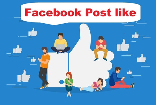 I will add 1000 Real Facebook post Likes to your Page