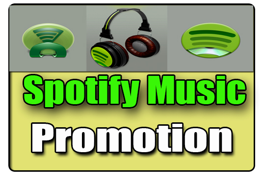 I will Do Spotify Music  Promotion