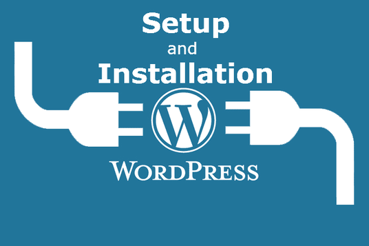 I will install & setup WordPress or WordPress Theme Demo