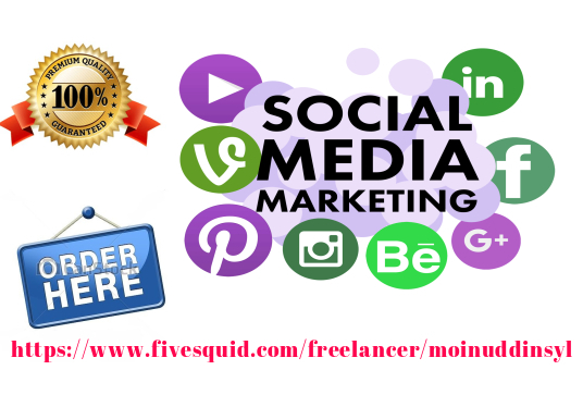 I will Be Your Social Media Marketing Manager