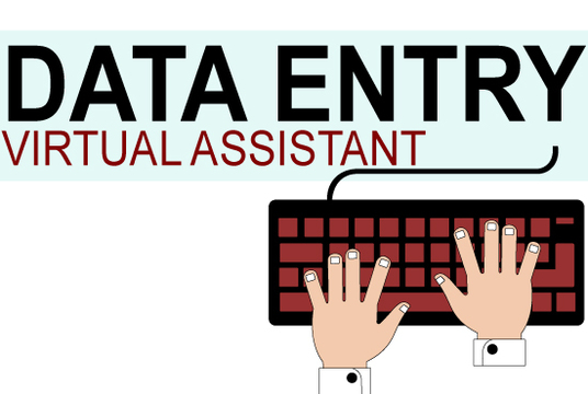 I will do Data Entry and web research