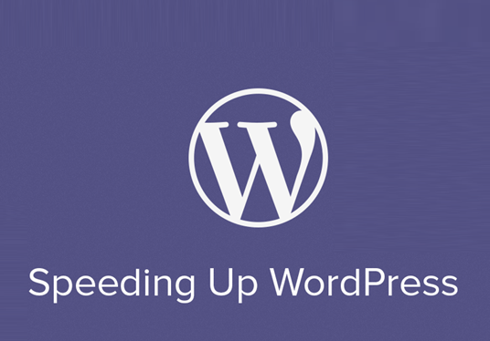 improve WordPress speed and optimize your website