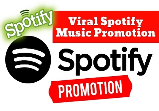 I will Do Spotify Promotion For Your Music Single Or Album