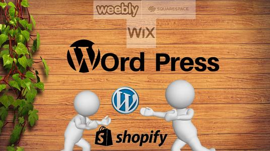 develop a website using WordPress, Weebly, Wix, square space, or Shopify and by coding
