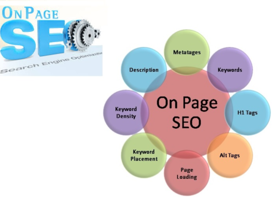 I will Do On Page SEO With Meta Tags, Alt Tags And H1 Tags