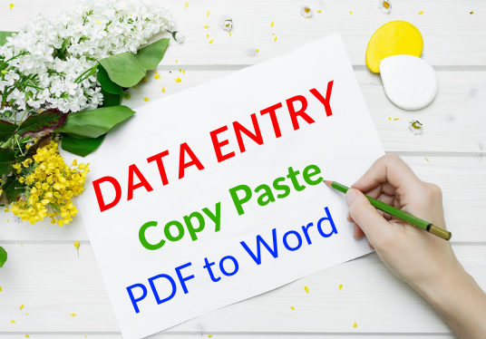 I will do data entry, copy paste, and PDF to word work within 24 hour