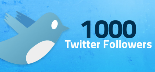 I will Provide you 200 safe and Real twitter  Followers