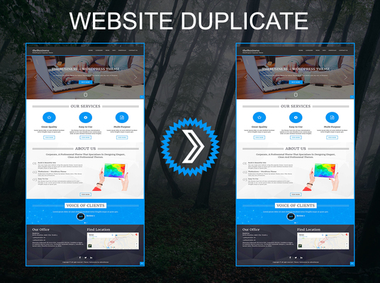I will Clone website, Duplicate website by WordPress