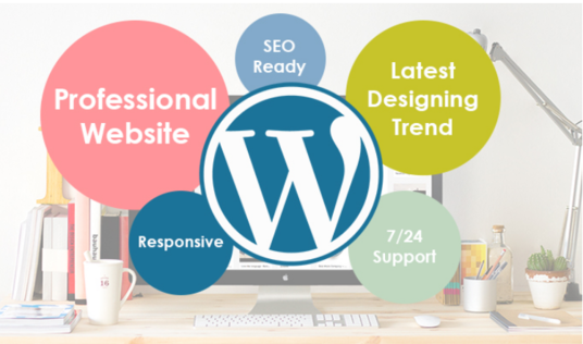 I will Design And Develop A Professional Wordpress Website