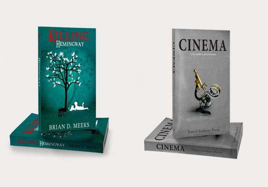 Create a Great Looking Ebook Cover & Packaging Design