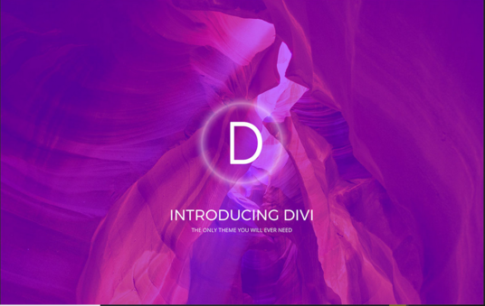 I will design a page using divi builder