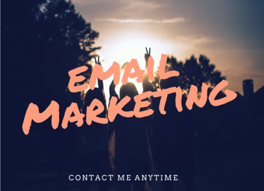 I will Do Manual Email Marketing