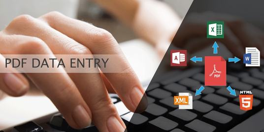 I will do data entry 50 pages pdf to word, notepad or related