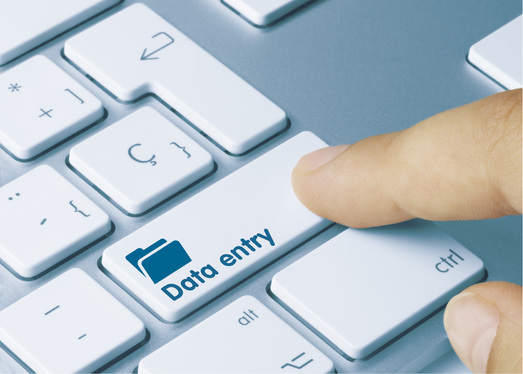 do data entry 50 pages pdf to word, notepad or related
