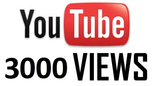 I will send 3000 youtube views for your video
