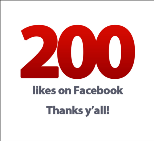 I will add 200 Permanent Facebook Page Likes