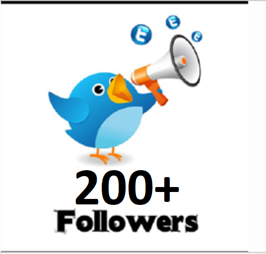 I will add 200 Permanent Twitter Followers